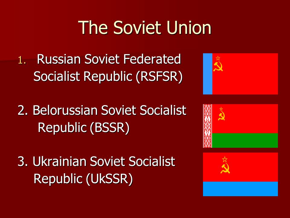 The Soviet Union Russian Soviet Federated Socialist Republic (RSFSR)