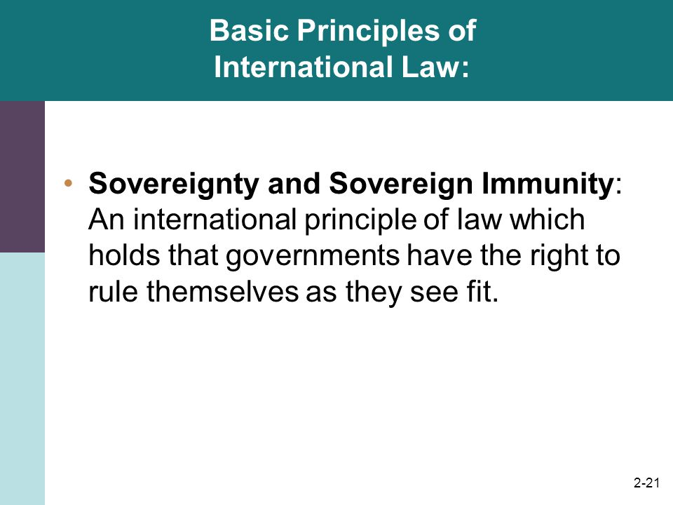 Basic Principles of International Law:
