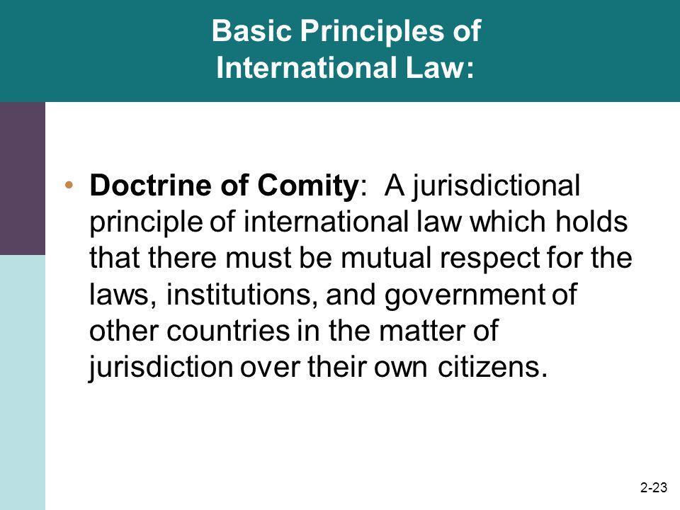 Basic Principles of International Law: