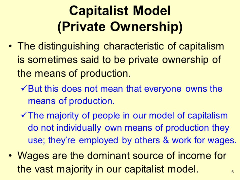 Capitalist Model (Private Ownership)