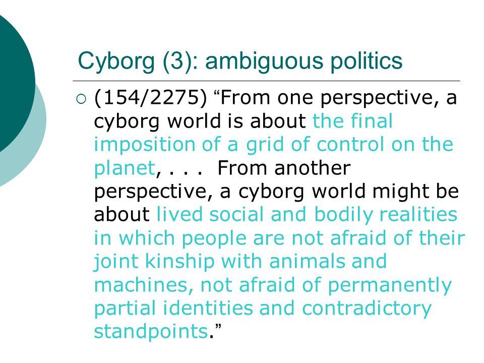 Cyborg (3): ambiguous politics