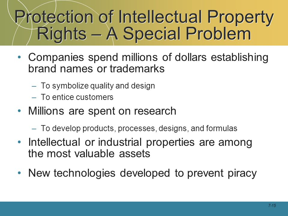 Protection of Intellectual Property Rights – A Special Problem