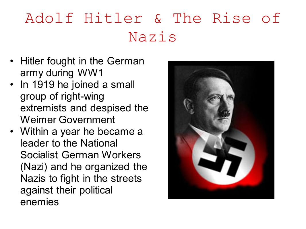 rise of national socialism