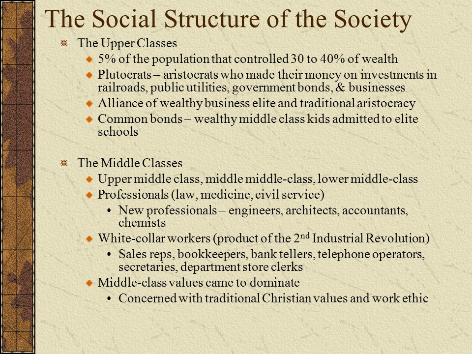 The Social Structure of the Society
