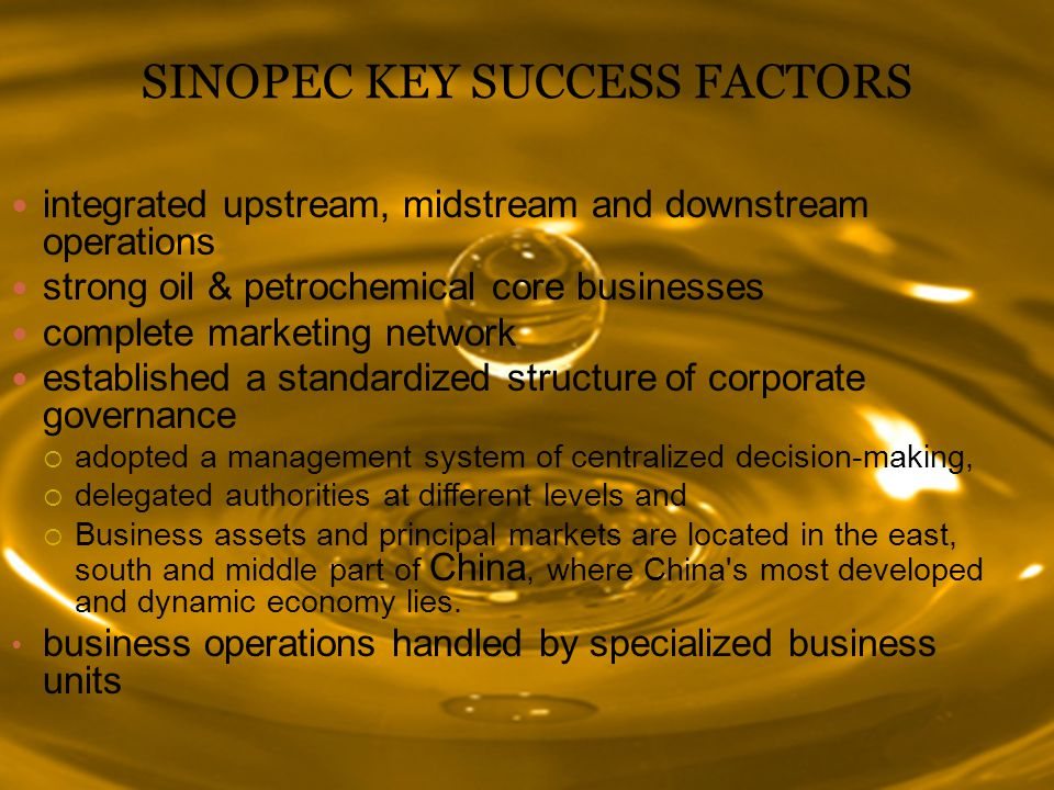 SINOPEC KEY SUCCESS FACTORS