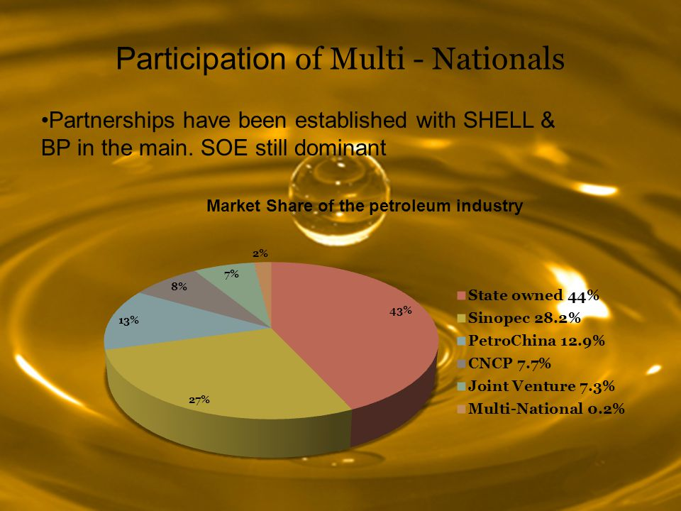 Participation of Multi - Nationals