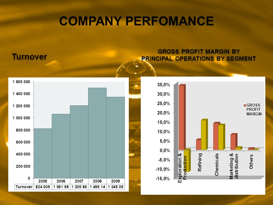 GROSS PROFIT MARGIN BY PRINCIPAL OPERATIONS BY SEGMENT