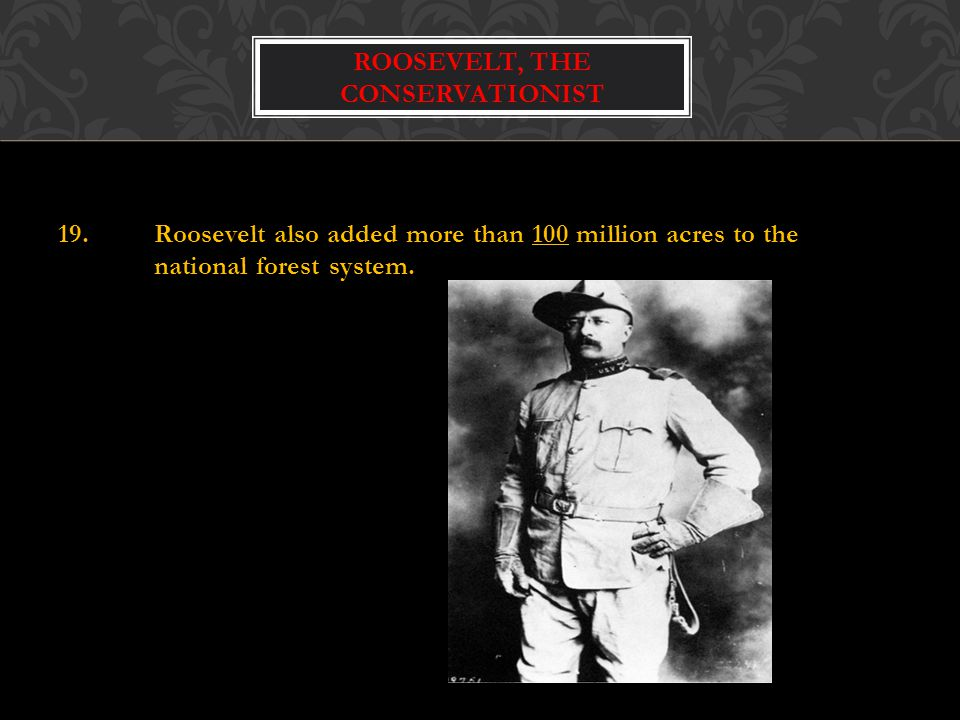 Roosevelt, the conservationist