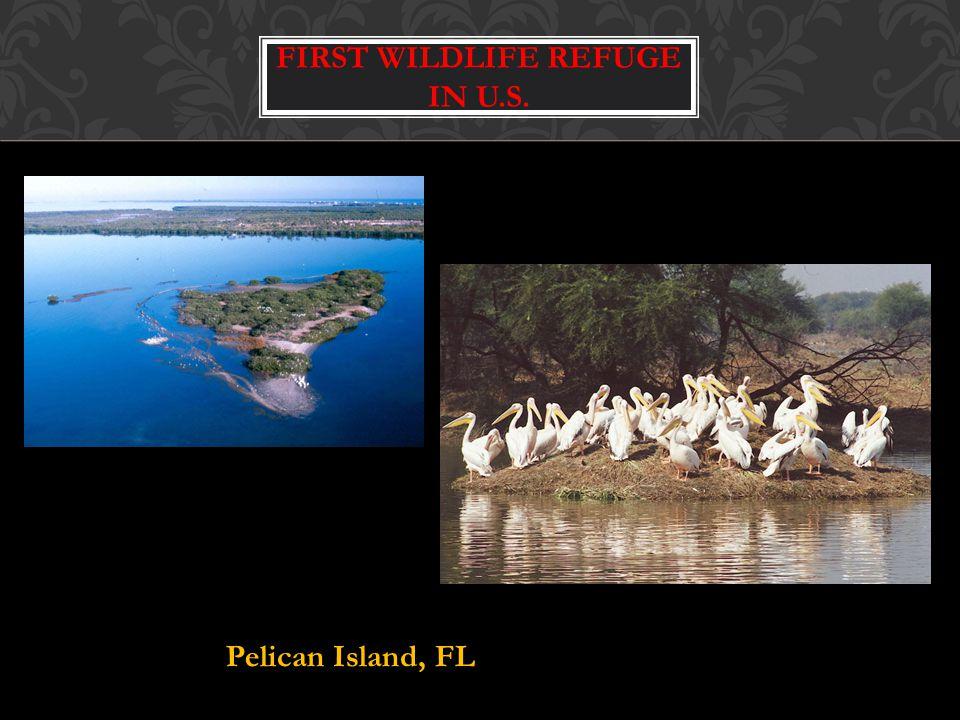 First Wildlife Refuge in U.S.