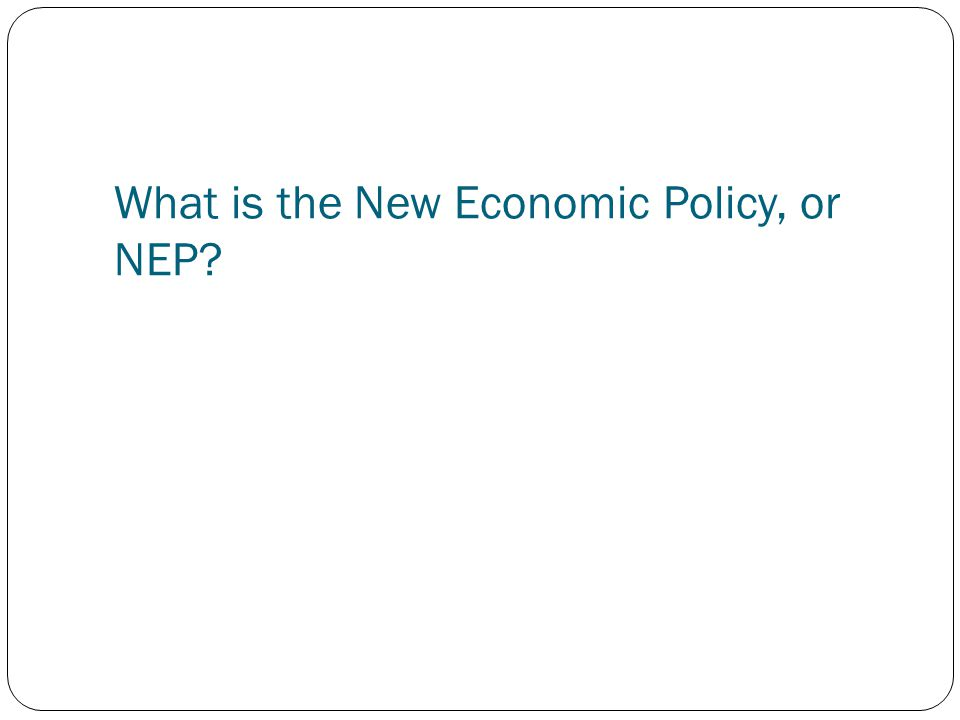What is the New Economic Policy, or NEP
