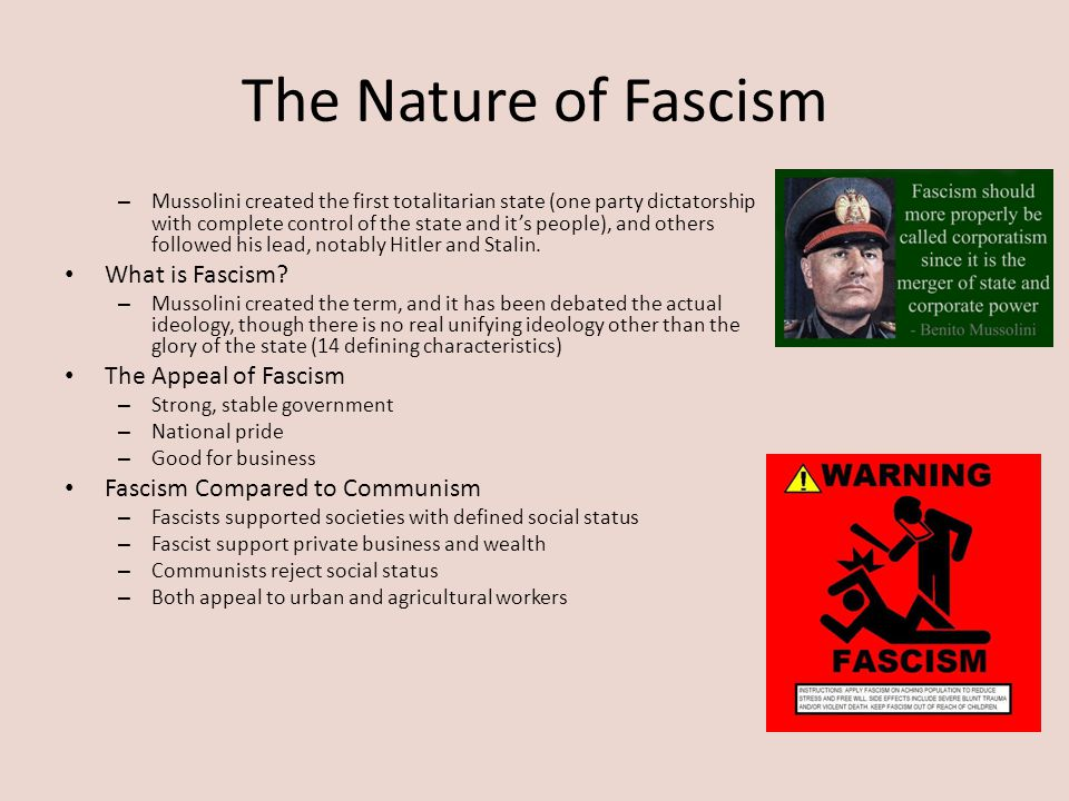 The Nature of Fascism What is Fascism The Appeal of Fascism