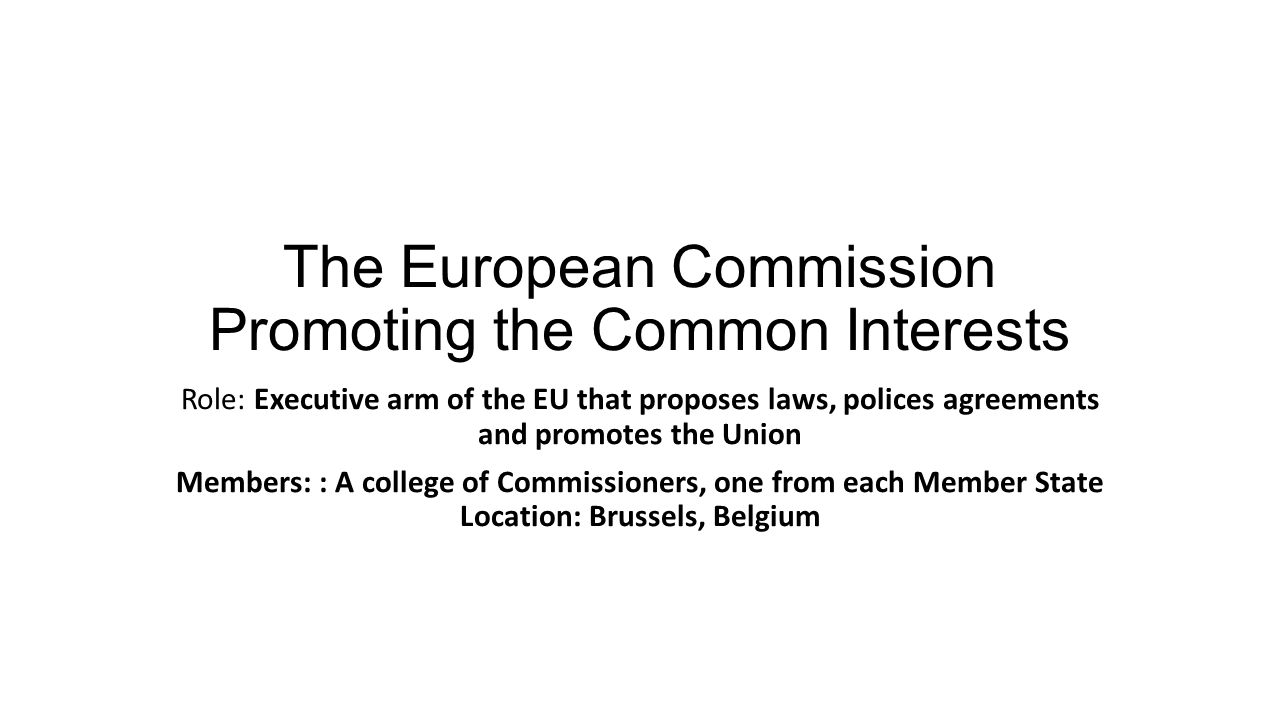 The European Commission Promoting the Common Interests
