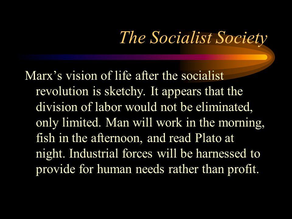 The Socialist Society
