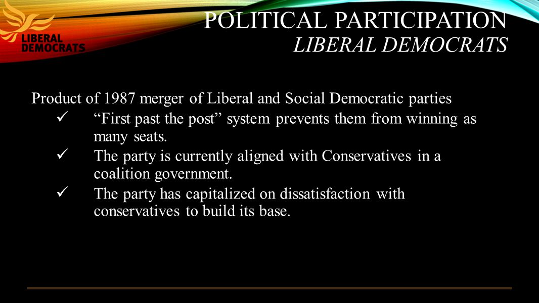 Political Participation Liberal Democrats
