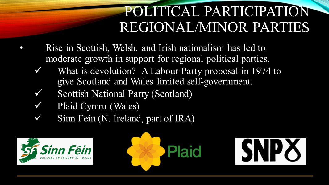 Political Participation Regional/Minor Parties