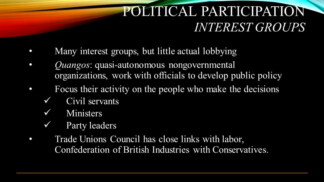 Political Participation Interest Groups