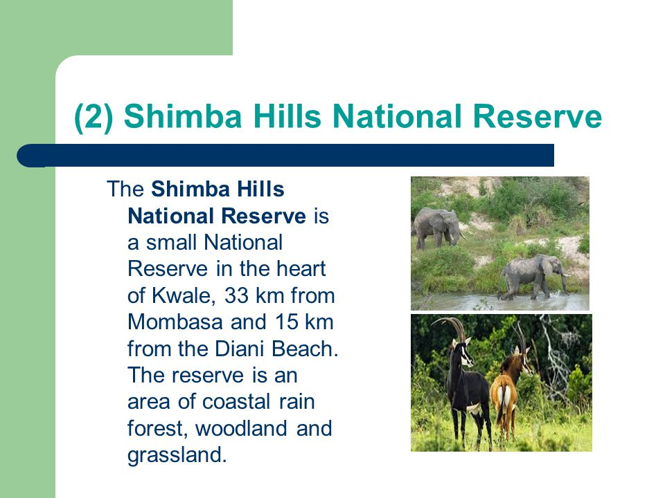 (2) Shimba Hills National Reserve
