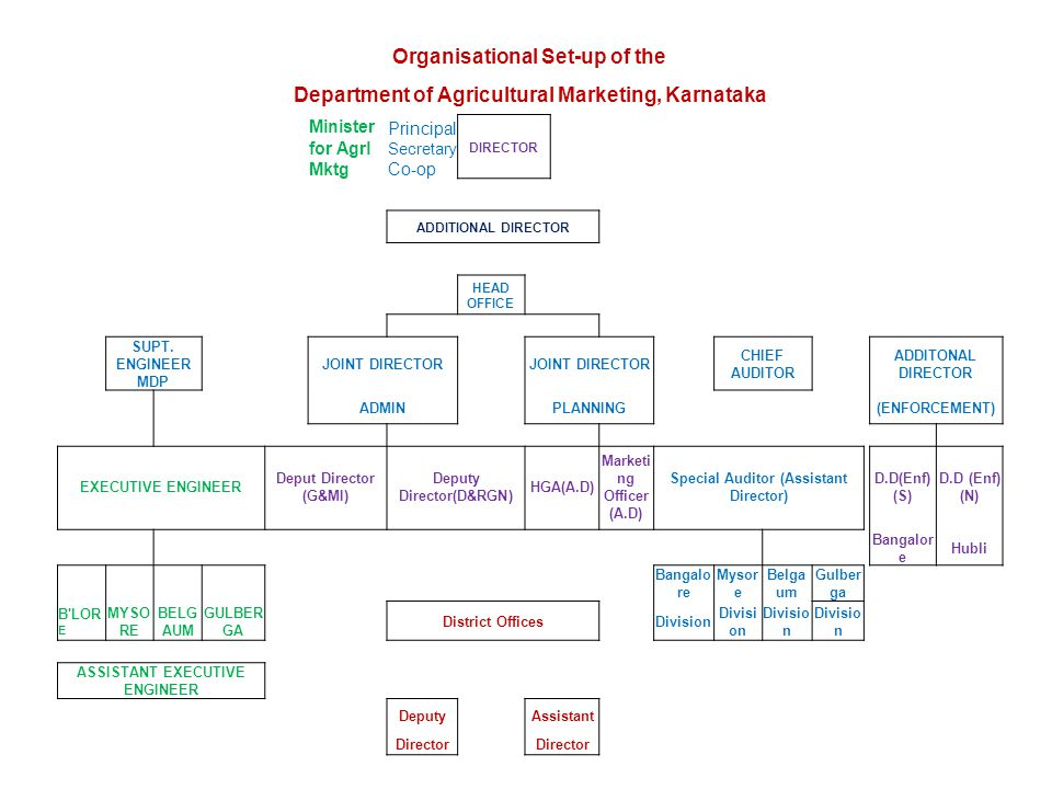 Organisational Set-up of the