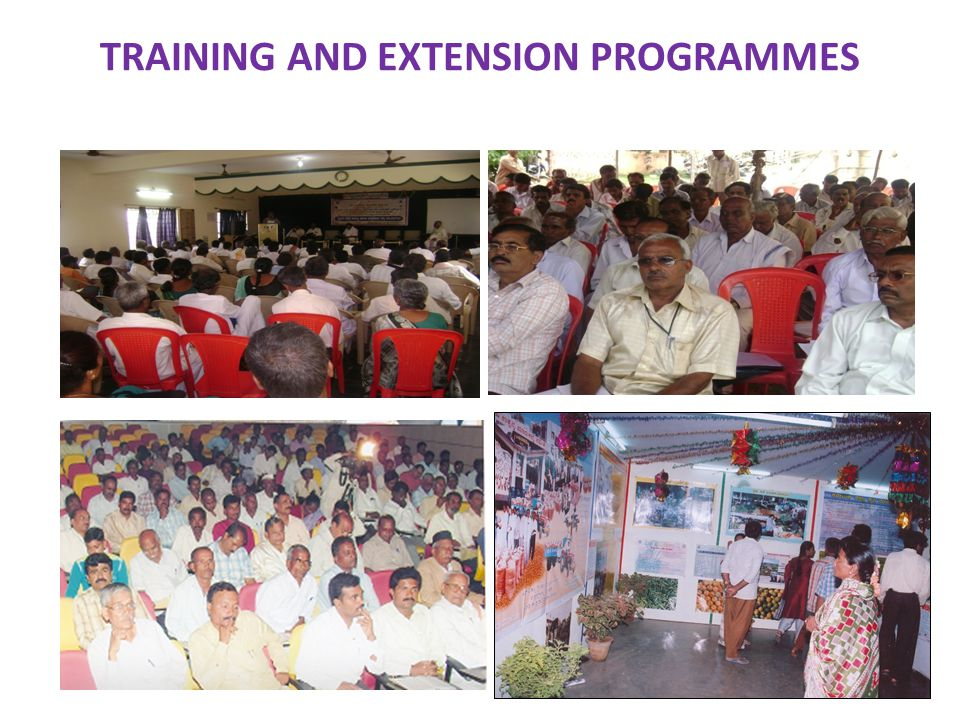 TRAINING AND EXTENSION PROGRAMMES