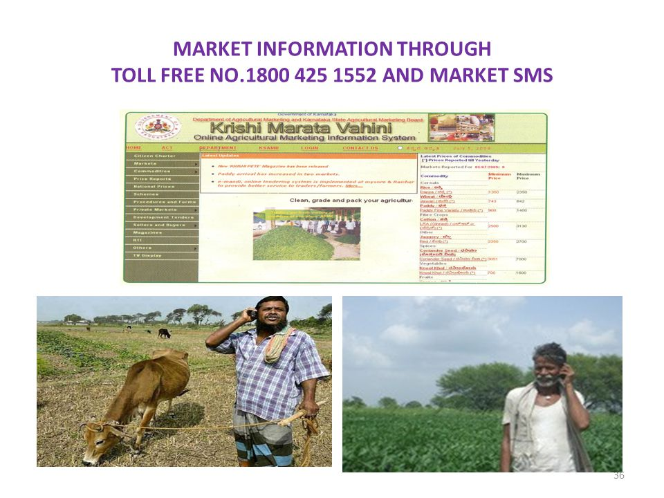 MARKET INFORMATION THROUGH TOLL FREE NO.1800 425 1552 AND MARKET SMS