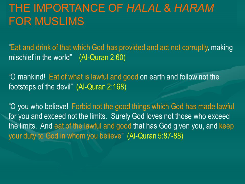 THE IMPORTANCE OF HALAL & HARAM FOR MUSLIMS