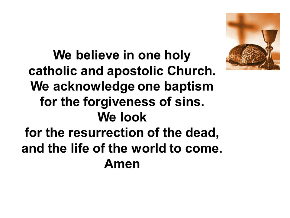 catholic and apostolic Church. We acknowledge one baptism
