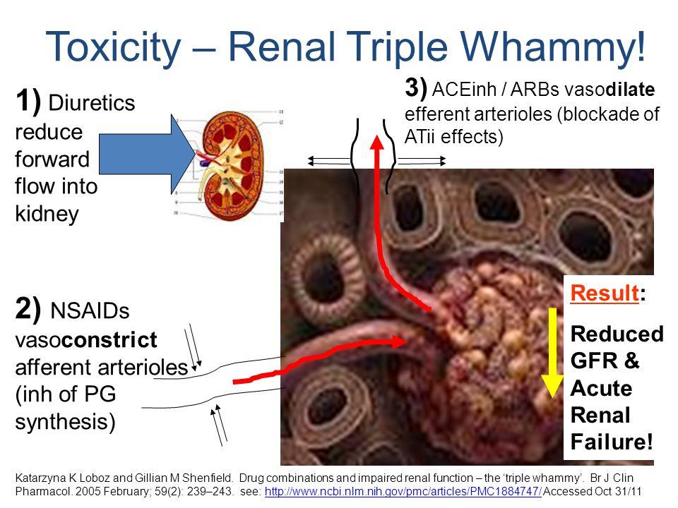 Toxicity – Renal Triple Whammy!