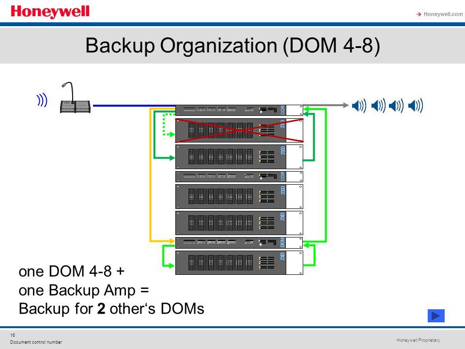 Backup Organization (DOM 4-8)