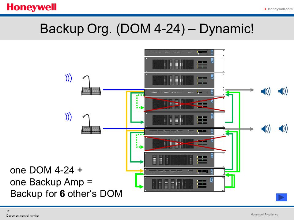 Backup Org. (DOM 4-24) – Dynamic!