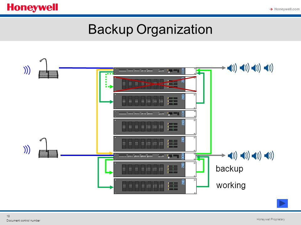 Backup Organization backup working
