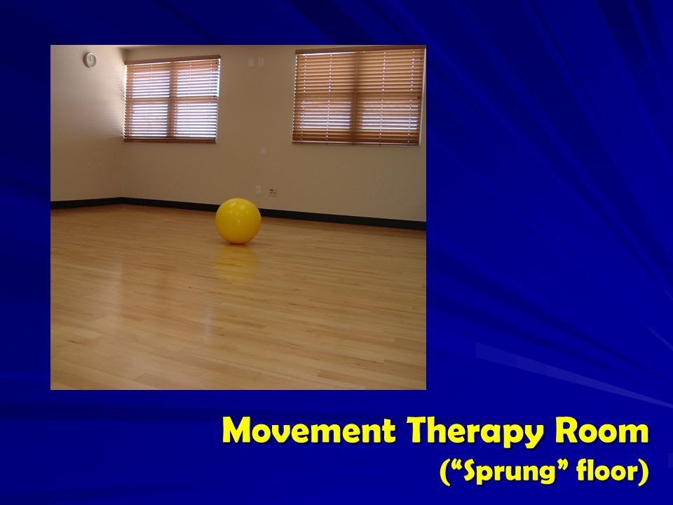 Movement Therapy Room ( Sprung floor)