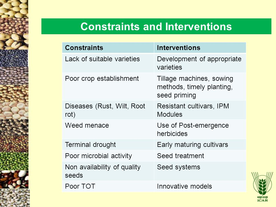 Constraints and Interventions