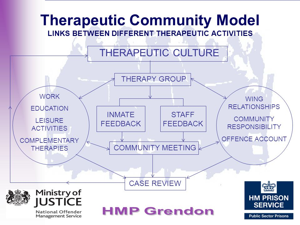 Therapeutic Community Model LINKS BETWEEN DIFFERENT THERAPEUTIC ACTIVITIES