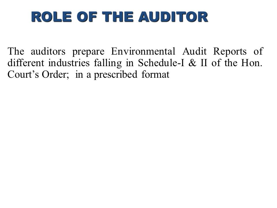 ROLE OF THE AUDITOR