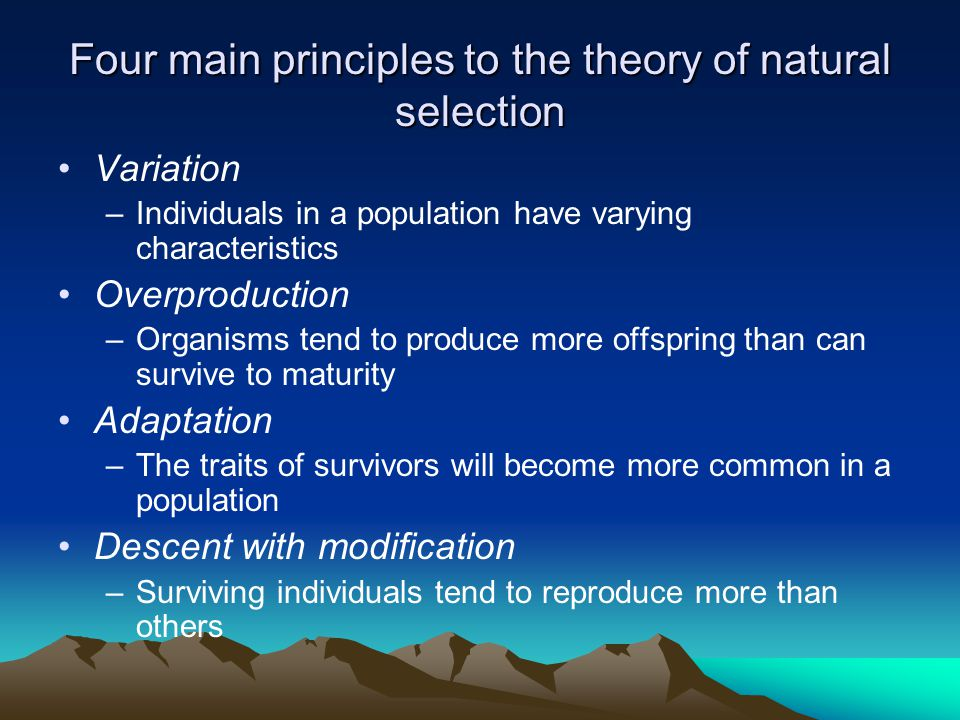 Four main principles to the theory of natural selection