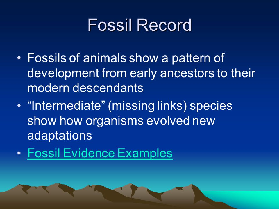 Fossil Record Fossils of animals show a pattern of development from early ancestors to their modern descendants.
