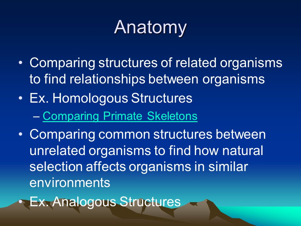 Anatomy Comparing structures of related organisms to find relationships between organisms. Ex. Homologous Structures.