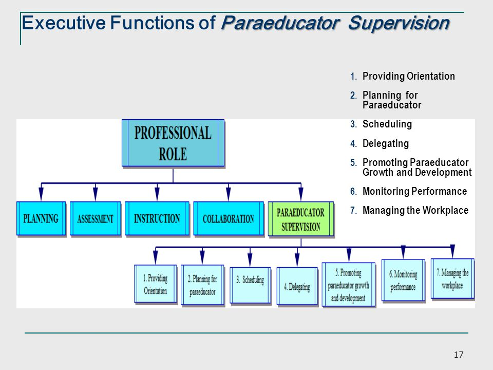 Executive Functions of Paraeducator Supervision