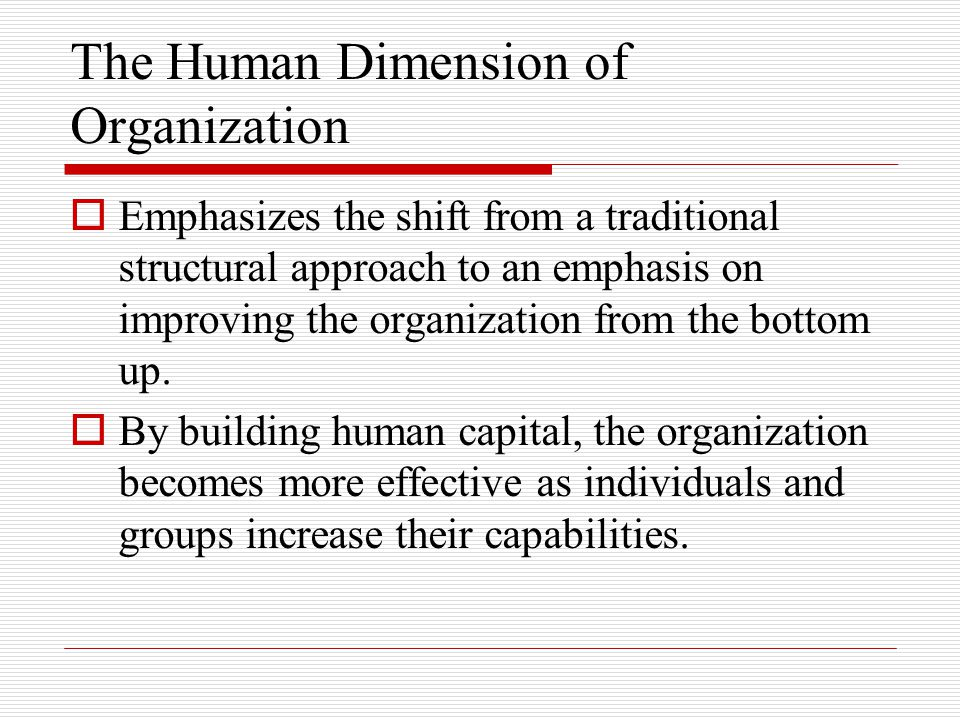 The Human Dimension of Organization