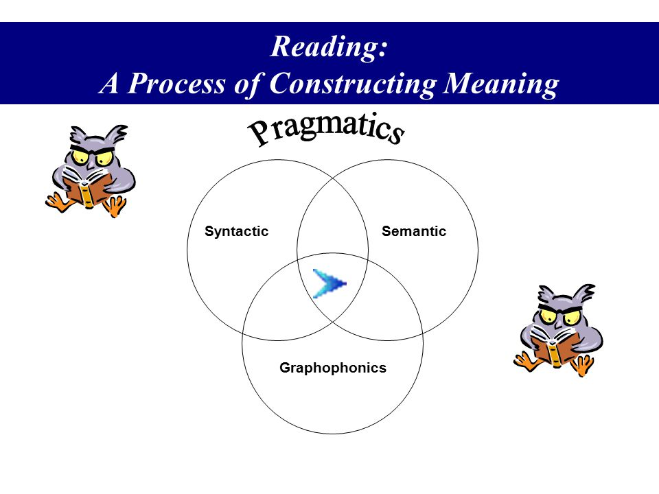 Reading: A Process of Constructing Meaning