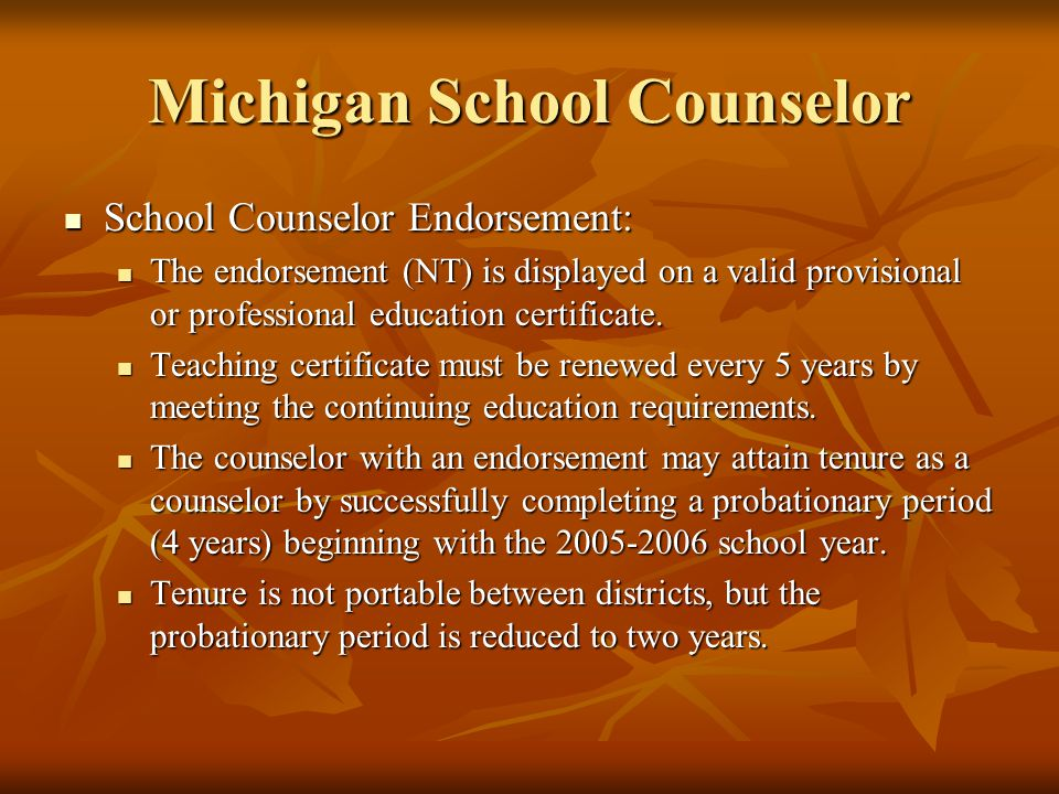 Michigan School Counselor