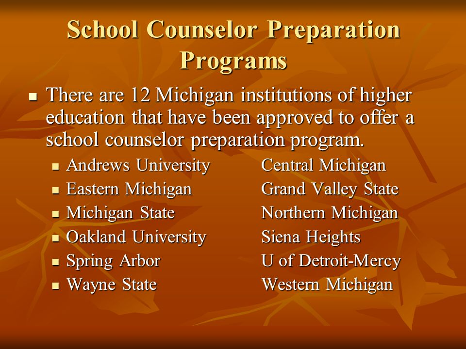 School Counselor Preparation Programs