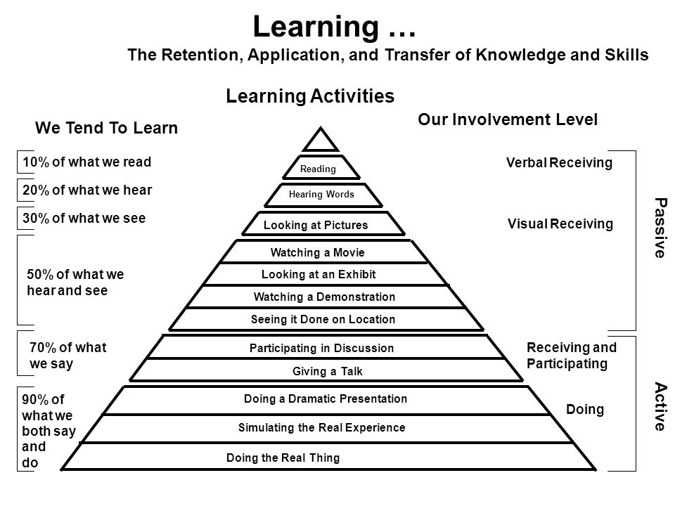 Learning … The Retention, Application, and Transfer of Knowledge and Skills