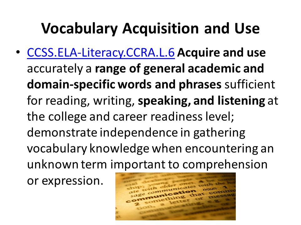 Vocabulary Acquisition and Use