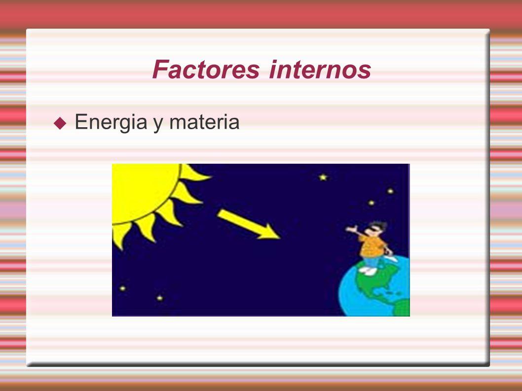 Factores internos Energia y materia