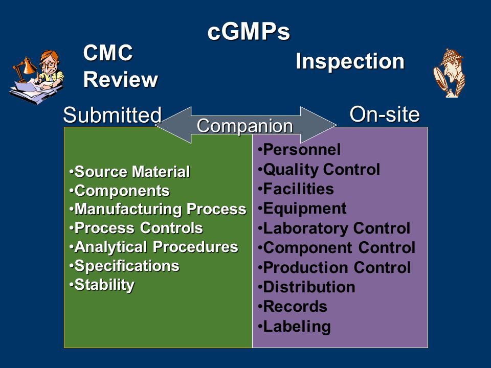 cGMPs CMC Review Inspection Submitted On-site Companion Personnel