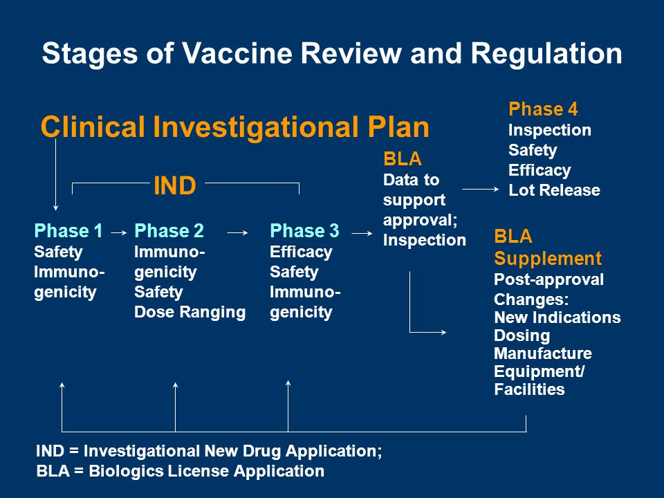 Stages of Vaccine Review and Regulation Clinical Investigational Plan
