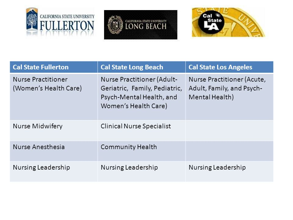 Cal State Fullerton Cal State Long Beach. Cal State Los Angeles. Nurse Practitioner (Women's Health Care)