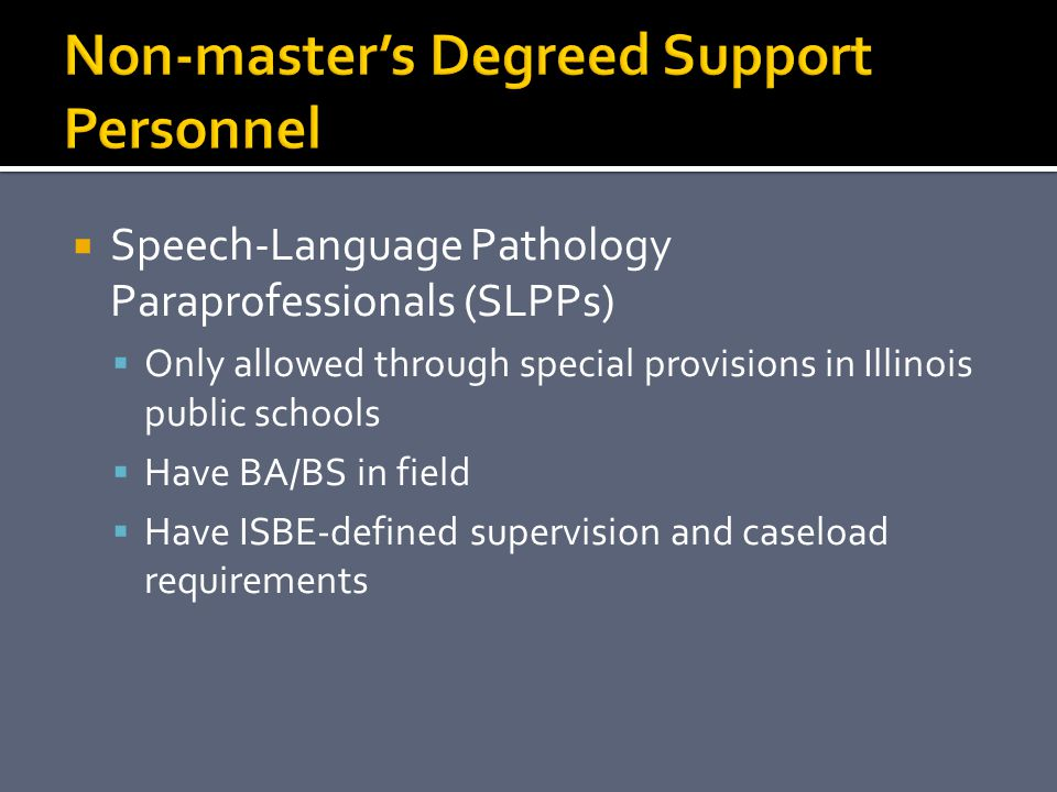 Non-master's Degreed Support Personnel