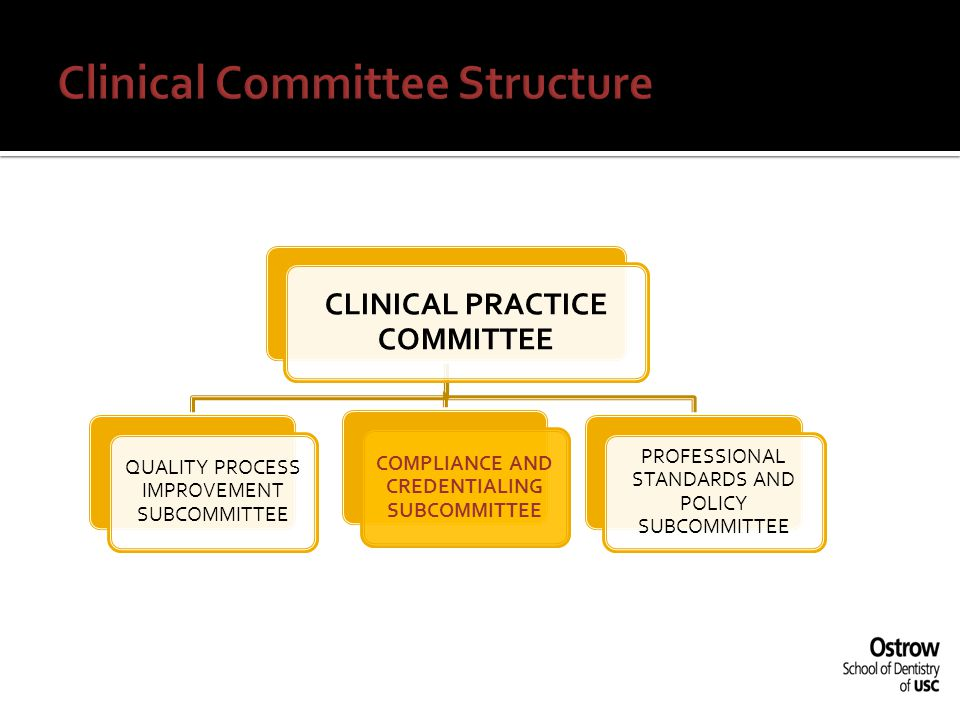 Clinical Committee Structure